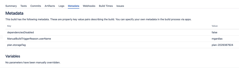 Build metadata section
