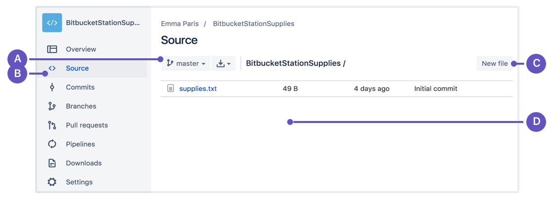 https://confluence.atlassian.com/bitbucket/files/304578655/741999003/3/1435695027896/new_file_st.png