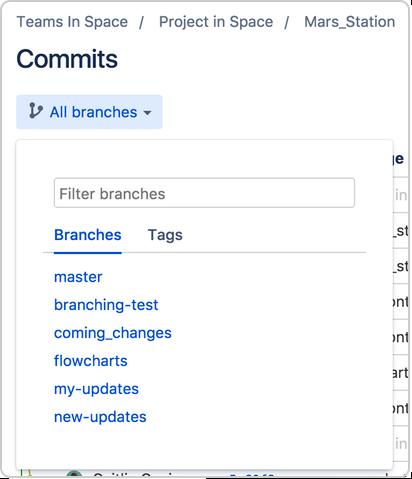 Repository tags - Atlassian Documentation